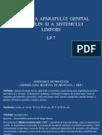 Lp 7 - Patologia Aparatului Genital Masculin Si a Sistemului Limfoid