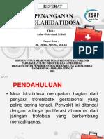 PPT - MOLA