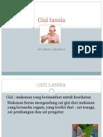 24543_gizi