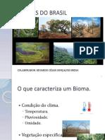 Biomoas Do Brasil