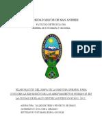 267811570-CRECIMIENTO-DE-LA-MANCHA-URBANA-DE-LA-CUIDAD-DE-EL-ALTO-BOLIVIA-GESTIONES-2001-2011.pdf