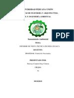Primer Informe Técnico n 2