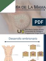 Anatomia de la mama-.pdf