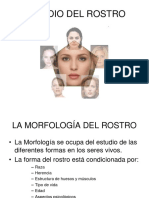 estudiodelrostro-101020162601-phpapp02.ppt