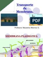 TransporteDE MEMMBRANA (2)