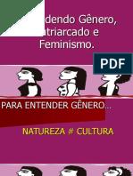 Atuacao Do Amicus Curiae No Controle Concentrado de Constitucionalidade (17)