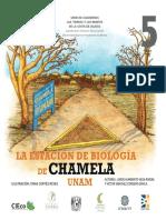 Estacion de Biolog i a Dec Hamel A