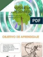 Clase 03_Fases de La Fotosíntesis