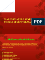 malformatii_curs_2015.ppt