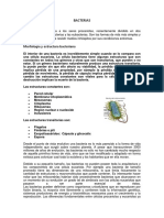 Bacterio Tema 3.4