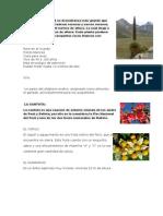 Flora de la región sierra.docx