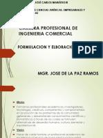 Formulacion PIP