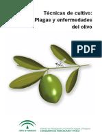 Tecnicas de cultivo plagas y enfermedades del olivo.pdf