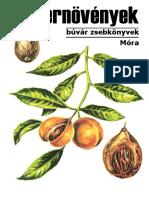 31._Fuszernovenyek.pdf