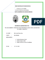 Nº02 quimica analitica.docx