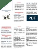 triptico pesca.pdf