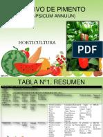 Horticultura Trabajocolaborativo