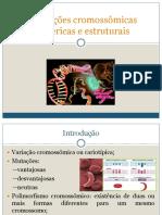 AULA - Aberrações cromossômicas numéricas e estruturais