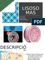 Presentación de las lisosomas