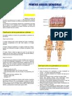 21533-Ficha quemaduras.pdf