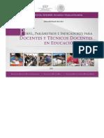 PPI_DOC_BA.pdf