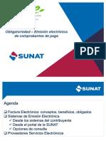 Comprobantes de Pagos Electronicos - SUNAT 2016 _46.pdf