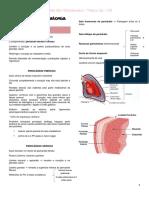 Resumão de Anatomia