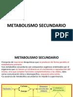 2. METABOLISMO SECUNDARIO