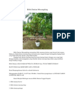 LUAR BIASA..!Hp/Wa 0813-2711-9234, Buah Durian Musang King, Bibit Durian Musang King Magelang Jawa Tengah,