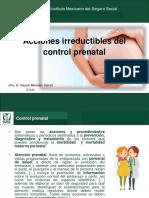 Acciones Irreductibles Del Control Prenatal