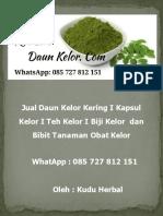 Jual Bibit Kelor di Semarang I WA