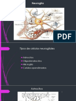 Expo Neuro
