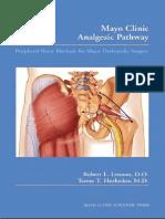 Analgesic Pathway - Peripheral Nerve Blocade for Major Orthopedic Surgery