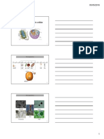 Estructura y Función Celular (Final 2016) [Modo de Compatibilidad]