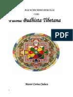 Palma Budhista Tibetana, Curs Practicant