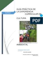 GUÍA_PRÁCTICA_07