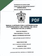 Saldate_Portilla_Jose_Antonio.pdf