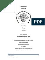 Pitiriasis Alba Case - Fenny