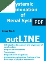 Renal System Examination