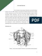 23352341-Endometriosis.docx