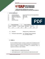 Silabo de Radioquimica y Radiofarmacia