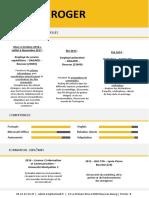 CV 2.pdf