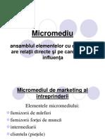 215455758-Mediu-de-Marketing-Franzeluta-Conspecte-md.ppt