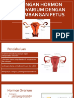 Hormon Ovarium Dan Fetus