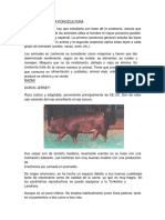 La Porcinocultura