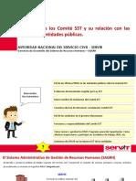 FUNCIONES SST.pdf