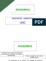 Bioquimica 285 Diapos 2017 (1)