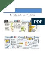 peru21.pdf