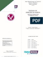 Tratado de Derecho de Familia - Kemelmajer de Carlucci - Tomo III - FM