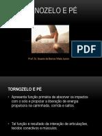 tornozeloepe.pdf